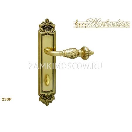 Дверная ручка на планке под фиксатор MELODIA mod.230 GEMINI WC полированная латунь